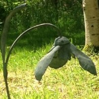 Plant Outdoor Outside Garden or Yard sculpture statue statuette by sculptor artist Colleen du Pon titled: 'Snowdrops (Giant Outsize Galanthus garden Flower sculpture statue)' in Mild steel, forged