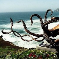 Octopus, Cuttle Fish, Squid, Pearly Nautilus Amonite by sculptor artist Kirk McGuire titled: 'Giant (Bronze Life Like Giant Sea Squid sculptures)' in Bronze