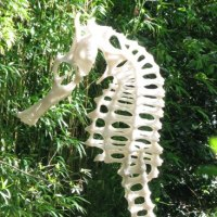 'Architecture of a Seahorse (garden Large sculpture)' by Peter Moulton