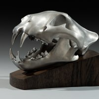 Asian Animals Reptiles Insects or Birds Sculpture or Statues by sculptor artist Simon Gudgeon titled: 'Tiger (aluminium Metal Head/Skull sculpture statue)' in Aluminium