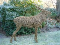 WILLOW/Steel bar. Deer sculpture by Emma Walker titled: 'Willow Stag (life size Standing Red DeerYard sculpture)'