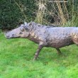 Bronze Resin Focal Point Abstract Contemporary Modern sculpture statue sculpture by Rosie Sturgis titled: 'Wilberforce the Warthog - Bronze resin'